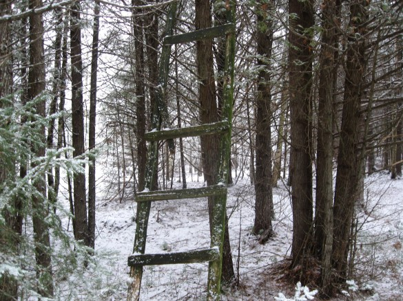 Diy build your own tree stand wooden pdf homemade cat tree for Build your own tree stand